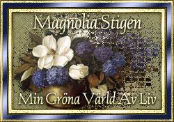 Magnolia Stigen